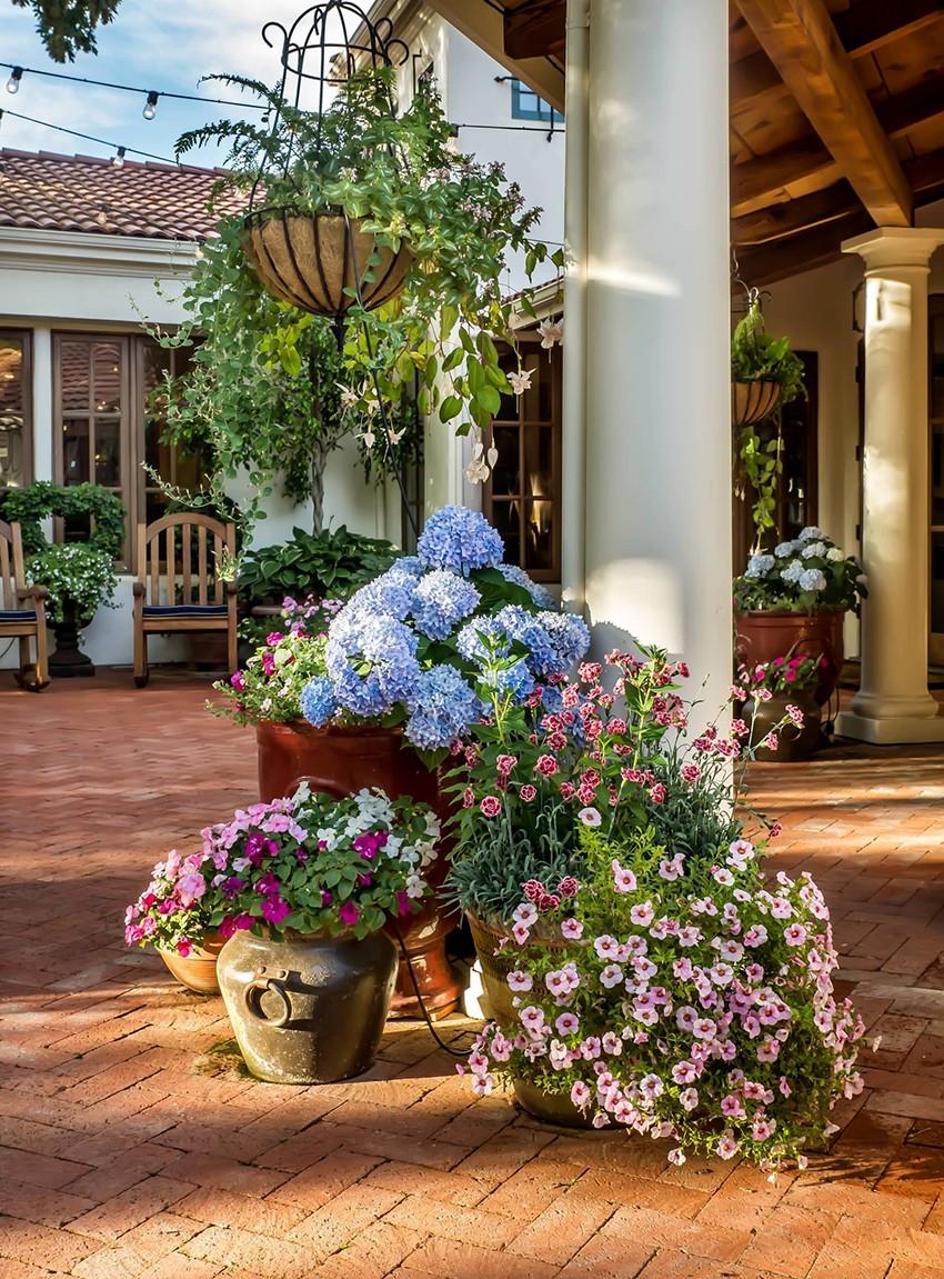 многочисленным бракам, украшение двора цветами фото несколько раз, чтобы