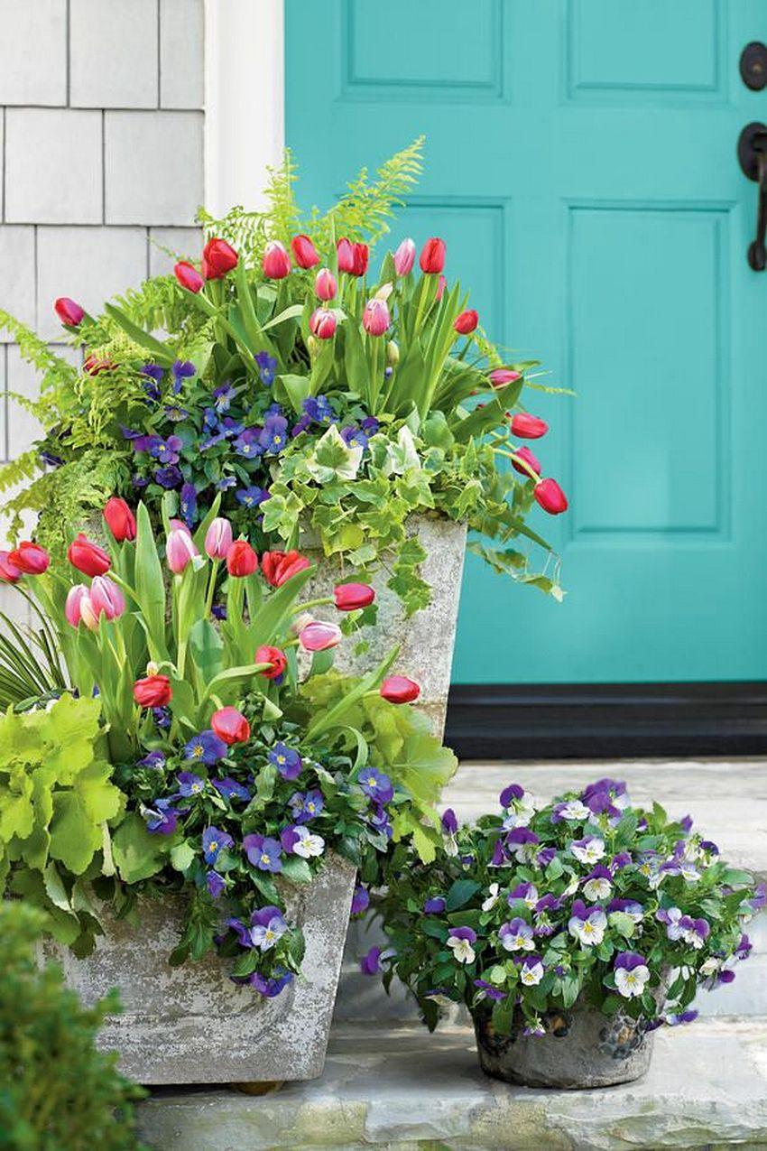 Цветник перед входом в дом, устроенный в бетонных вазонах разного размера.