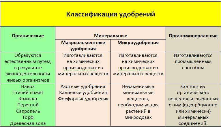 podkormka-ogurtsov-foto-video-chem-i-kak-udobryat-ogurtsy-2