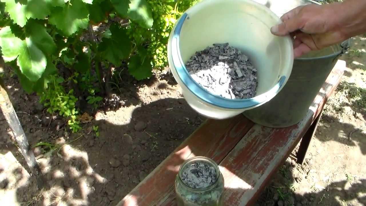 Древесная печная зола и пепел от сожженных растений являются натуральным минеральными удобрениями.