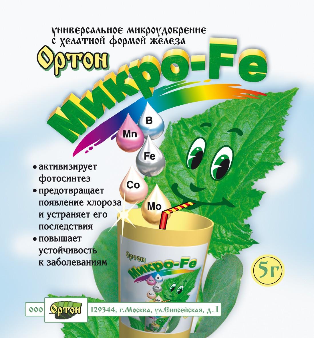 murajya-foto-video-posadka-razmnozhenie-uhod-v-domashnih-usloviyah-8