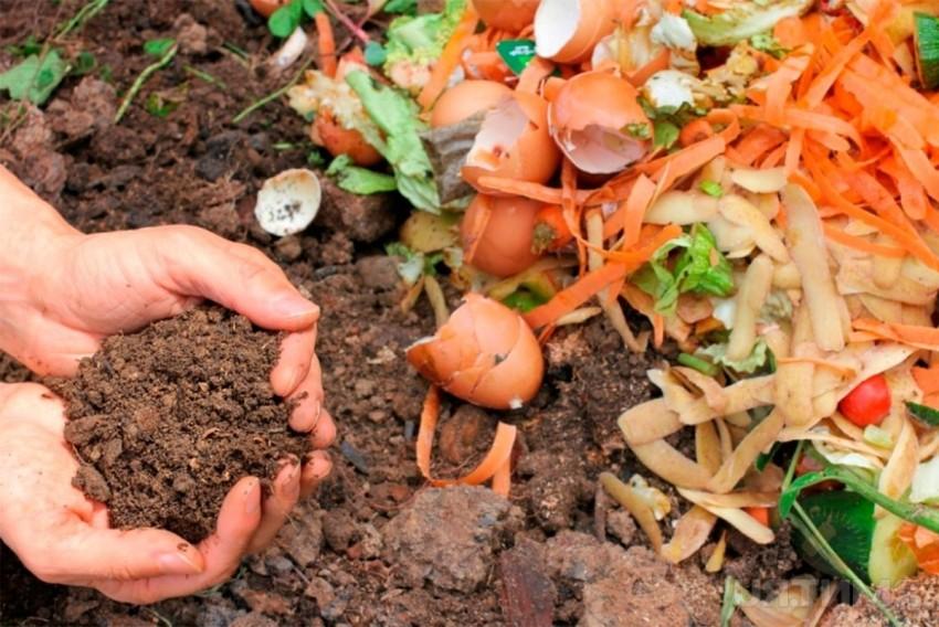 kompostnyj-yashhik-foto-video-varianty-izgotovleniya-kompostnoj-yamy-8