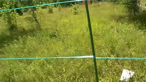 byudzhetnyj-zabor-foto-video-obzor-setki-dlya-zabora-na-dache-11