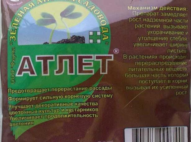 sposoby-vyrashhivaniya-rassady-kak-vyrastit-krepkuyu-rassadu-tomatov-20
