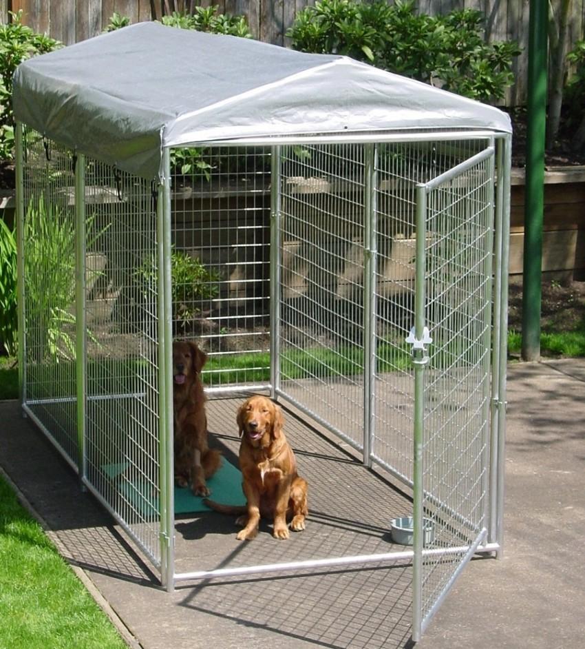 Пример вольера для собак .