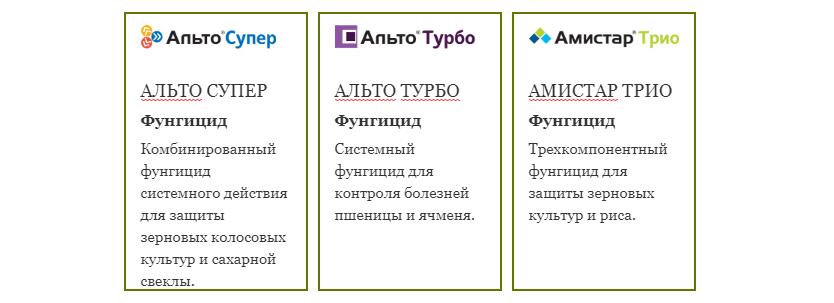 semena-gibrida-arbuza-syngenta-vegetativnye-i-selektivnye-svojstva-5