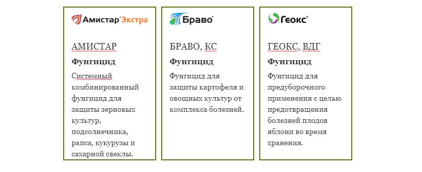 semena-gibrida-arbuza-syngenta-vegetativnye-i-selektivnye-svojstva-6