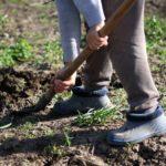 Готовим грядки для весны: разные способы обработки почвы