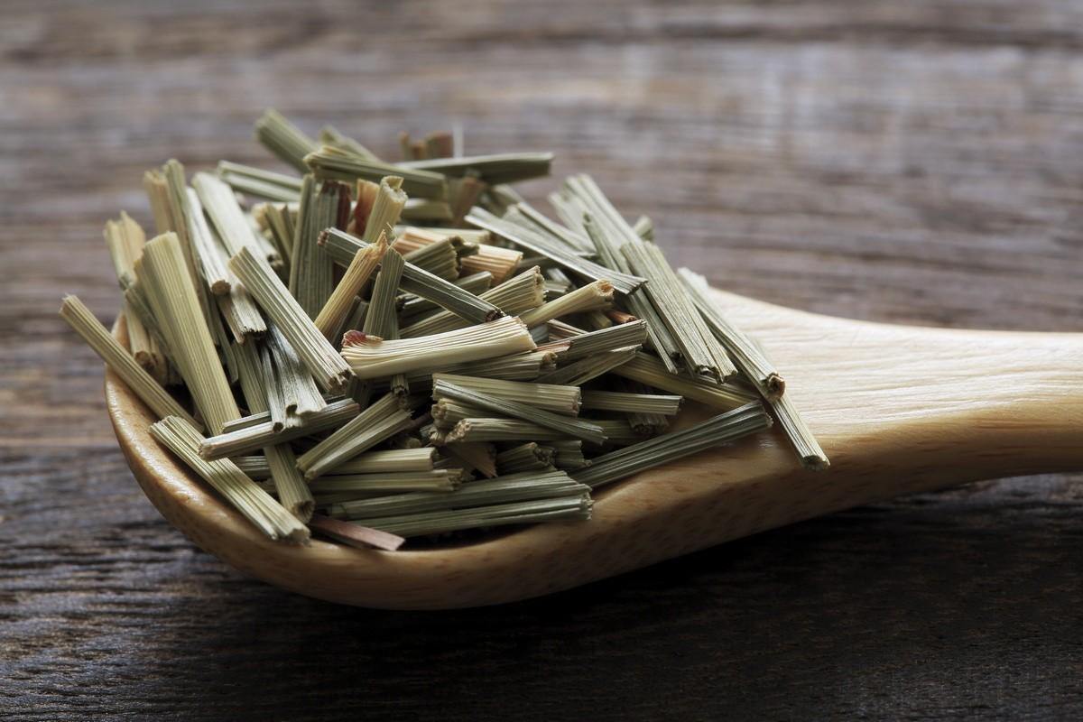lemongrass-foto-opisanie-usloviya-vyrashhivaniya-posadka-i-uhod-4